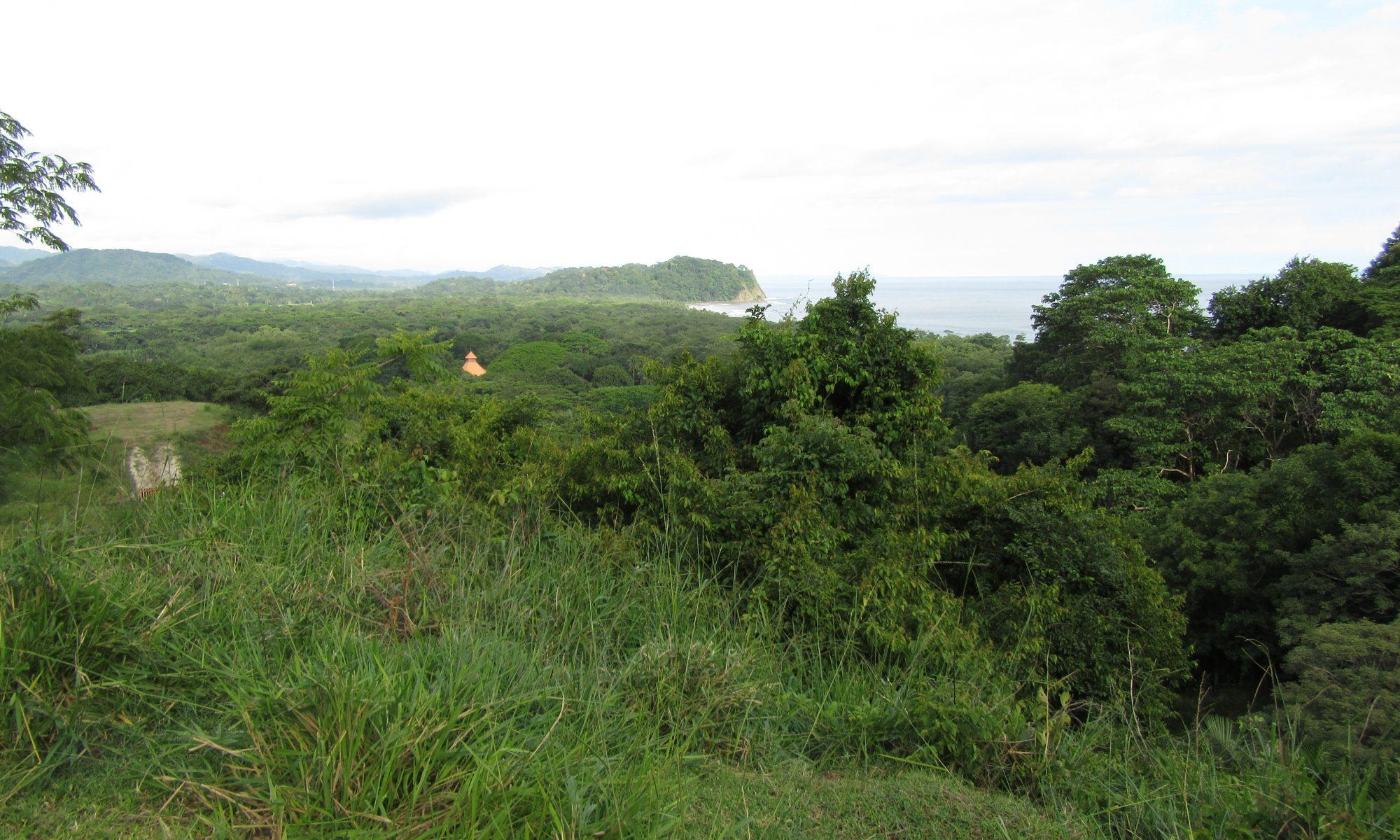 Landkauf in Costa Rica