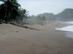 No plastic on the beach
