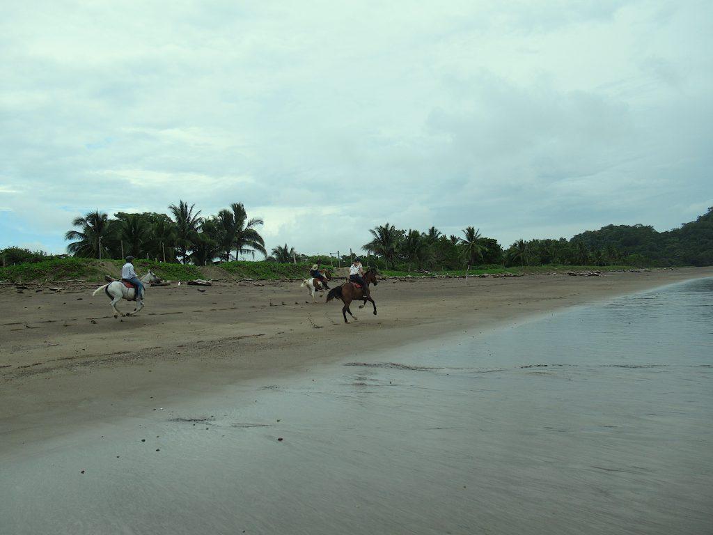 Costa Rica Reiten bei Strand Wetter
